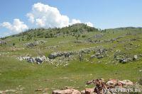 Albania17087