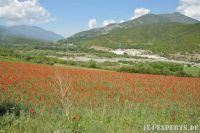 Albania17109